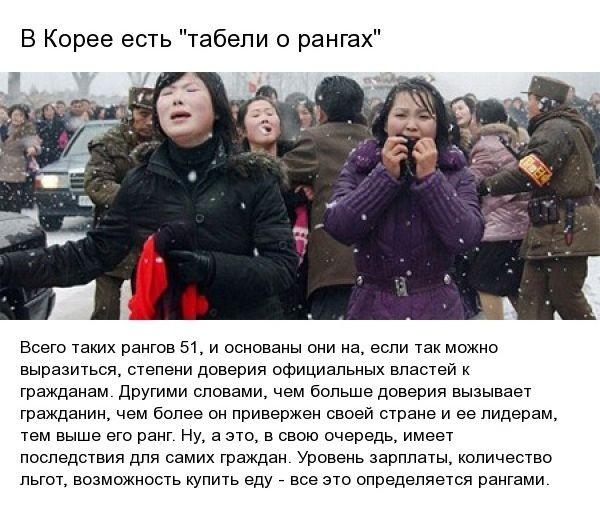 Удивительные факты о жизни в Северной Кореи (8 фото)