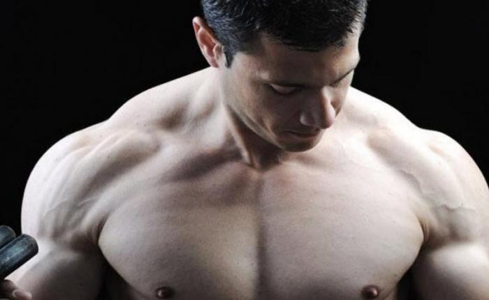 Как быстро нарастить мускулатуру (5 фото)