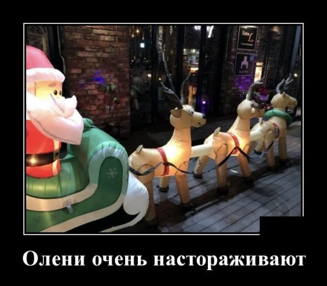 Демотиваторы (30 фото) 03.12.2018