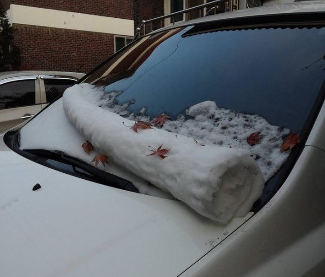 Прикольные картинки (50 фото) 03.12.2018