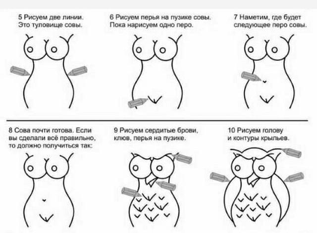 """Необычная инструкция: как """"правильно"""" рисовать сову (3 рисунка)"""