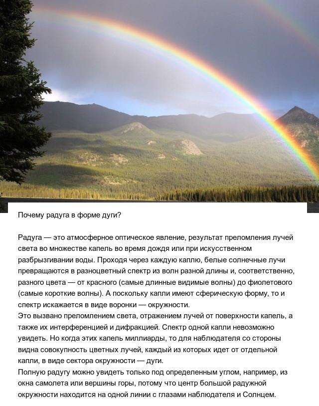 Познавательные ответы на разные вопросы (10 фото)