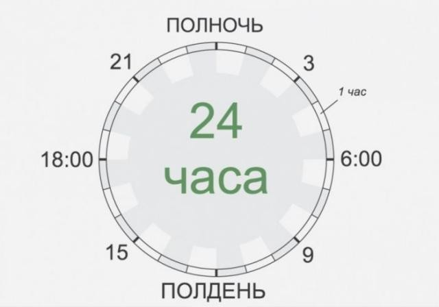 Расписание на сутки для знаменитостей (14 фото)