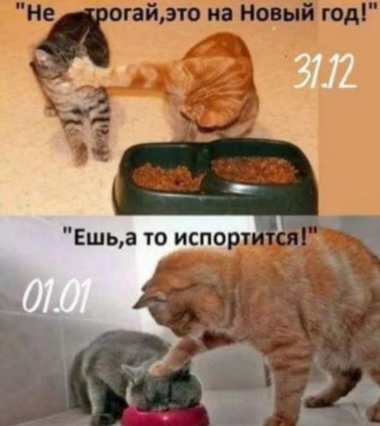 Прикольные картинки (46 фото) 11.12.2018