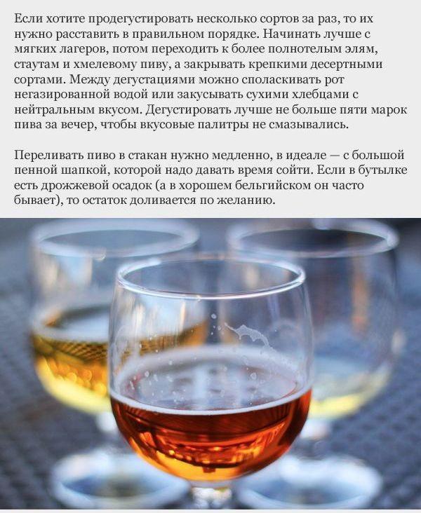 Как научиться выбирать хорошее пиво? (16 фото)