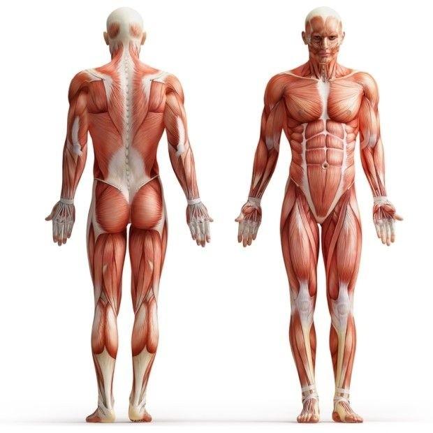 Необъяснимые загадки человеческого тела (11 фото)