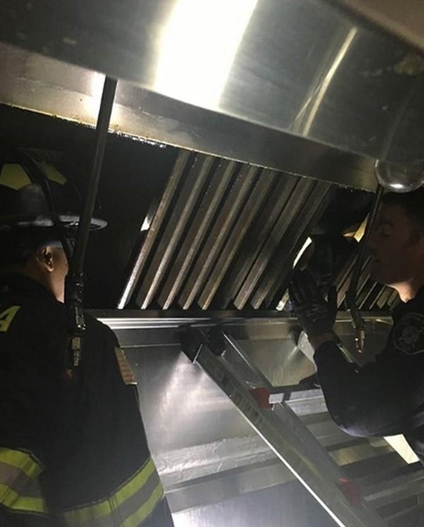 Повар ресторана услышал странные звуки в вентиляции (6 фото)