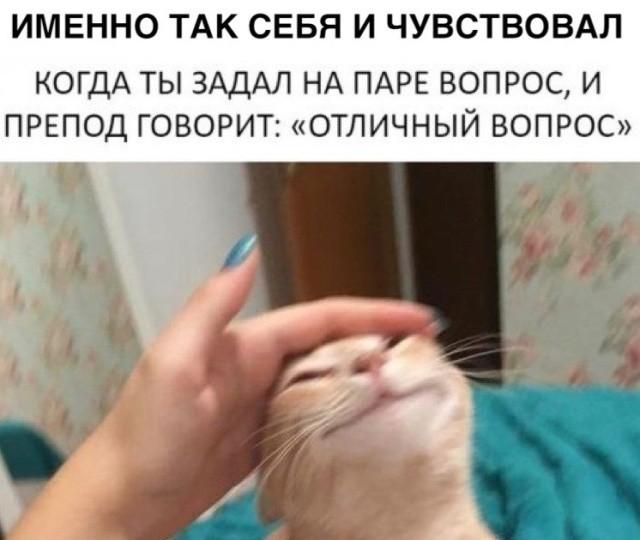 Прикольные картинки (39 фото) 19.12.2018