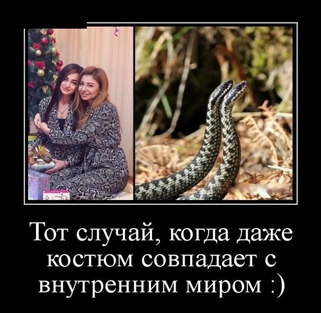 Демотиваторы (30 фото) 09.01.2019