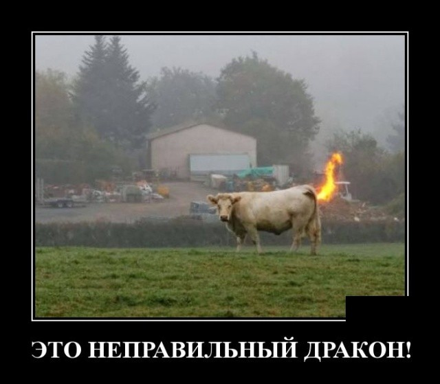 Демотиваторы (30 фото) 11.01.2019