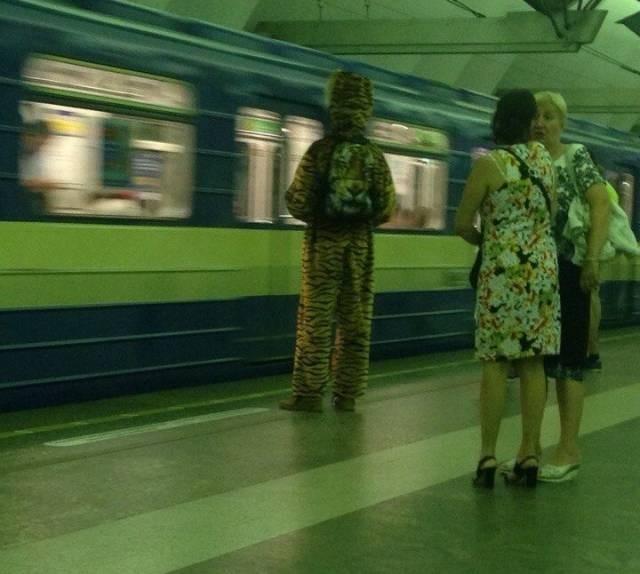 Модники и модницы (31 фото)