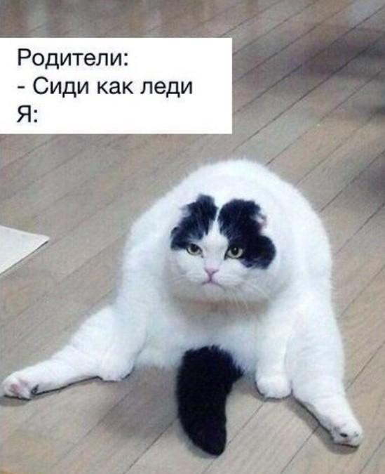 Прикольные картинки (40 фото) 16.01.2019