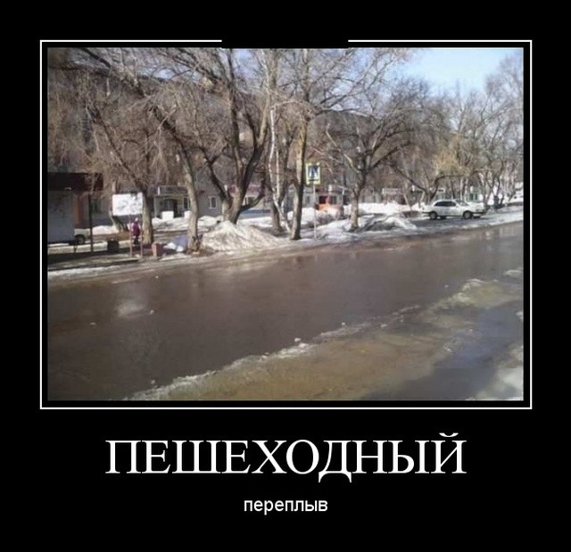 Демотиваторы (30 фото) 24.01.2019