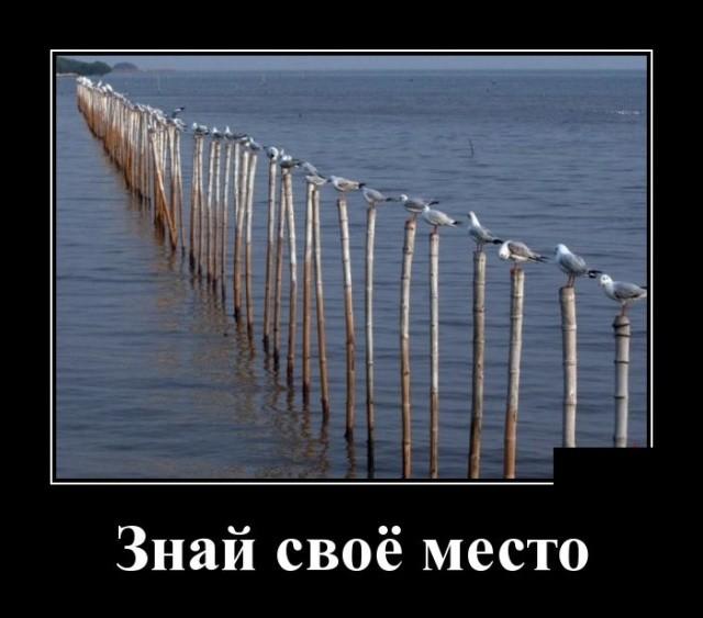 Демотиваторы (30 фото) 31.01.2019