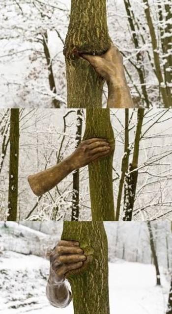 Природу не остановить (36 фото)