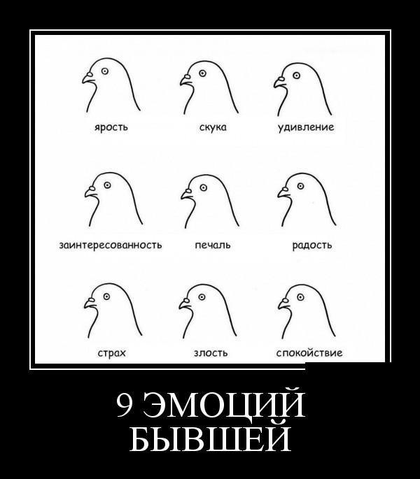 Демотиваторы (30 фото) 05.02.2019