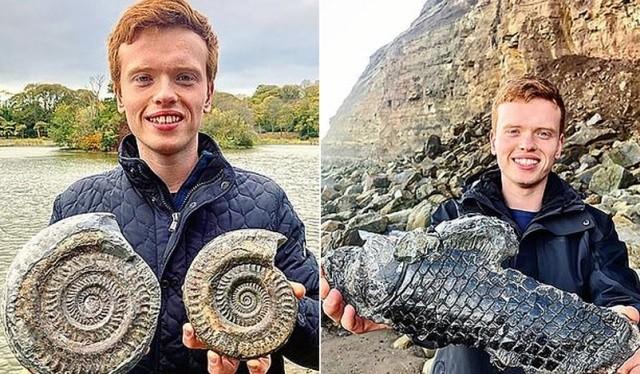 Британец нашел древнее существо, возраст около 185 милл. (3 фото)