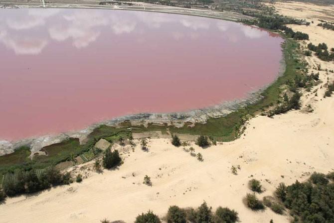 Озеро розового цвета (15 фото)