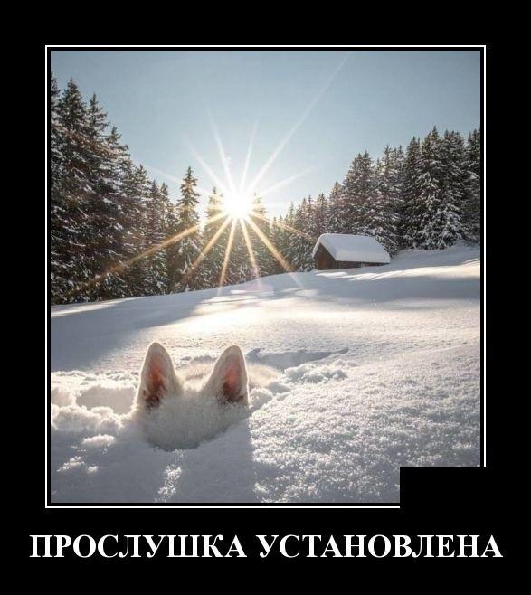 Демотиваторы (30 фото) 15.02.2019