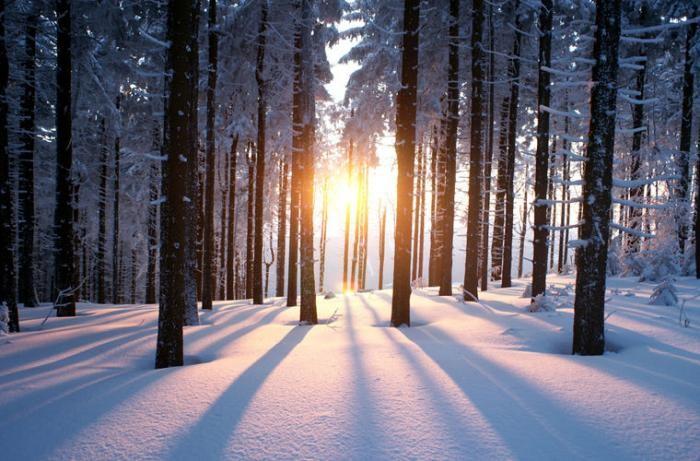 С чем связано, что солнце зимой светит, но не греет? (3 фото)