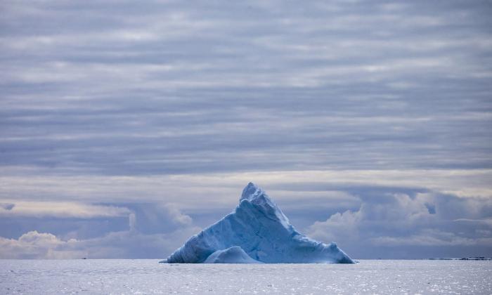 Антарктида в объективе (16 фото)