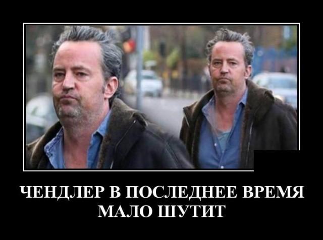 Демотиваторы (21.02.2019)
