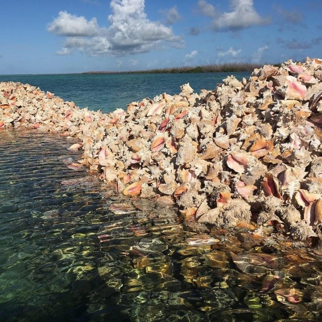 Необычный остров в Карибском море (11 фото)