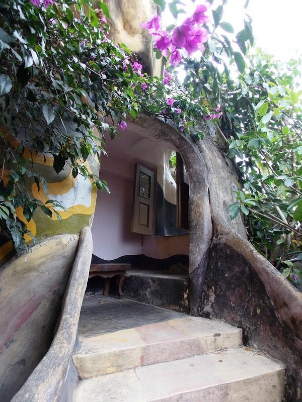 Вьетнамский «Сумасшедший дом» (29 фото)