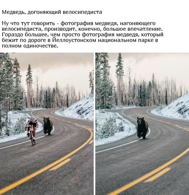 Известные фотографии, которые оказались фейком (28 фото)