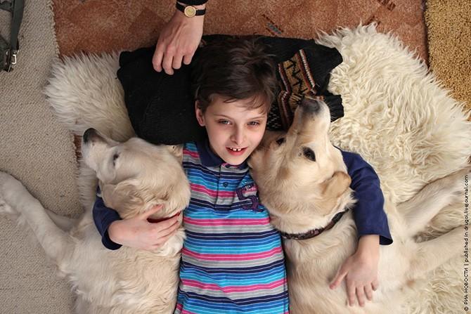 Канис-терапия – как собаки помогают больным детям (12 фото)