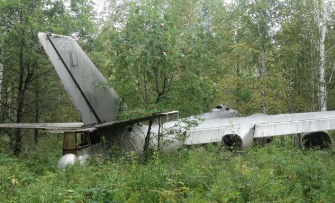 Грибник в лесу нашел самолет-призрак времен Второй мировой (2 фото)