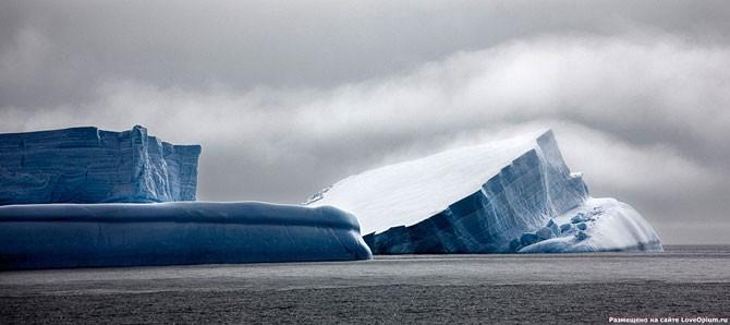 Морские монстры (19 фото)