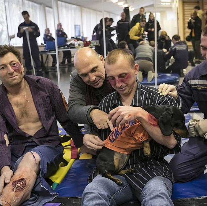 Такса Маруся стала психологом в спасательном центре (8 фото)