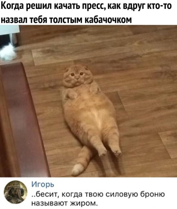 Прикольные картинки (43 фото) 13.03.2019