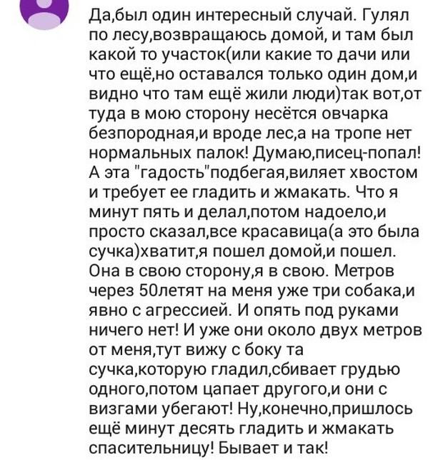 Прикольные картинки (46 фото) 14.03.2019