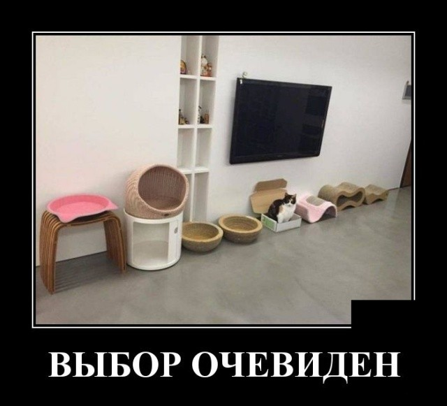 Демотиваторы (30 фото) 18.03.2019