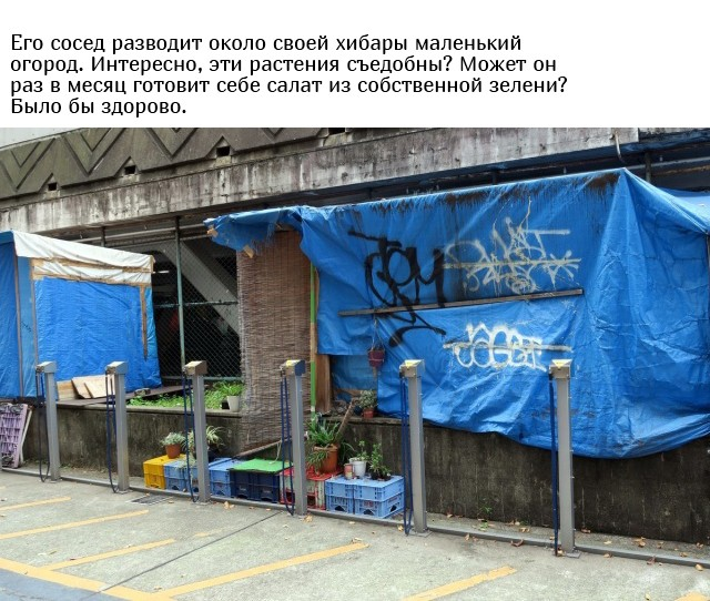 Как живут японские бездомные (9 фото)