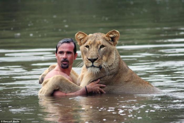 Водные процедуры со львом (4 фото)