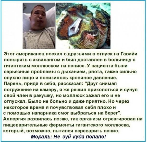 7 историй