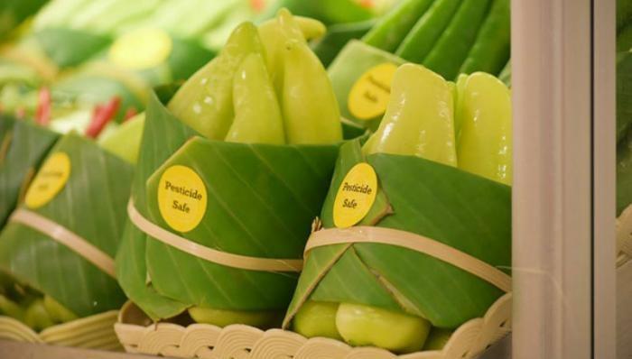 Вместо пластиковой упаковки стали использовать листья (6 фото)