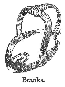 С помощью этой железной маски наказывали за сплетни (6 фото)