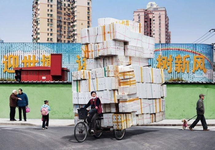 Мастера перевозок груза на велосипеде (9 фото)
