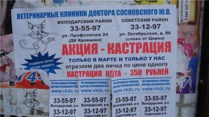 Народный копирайтинг (37 фото)