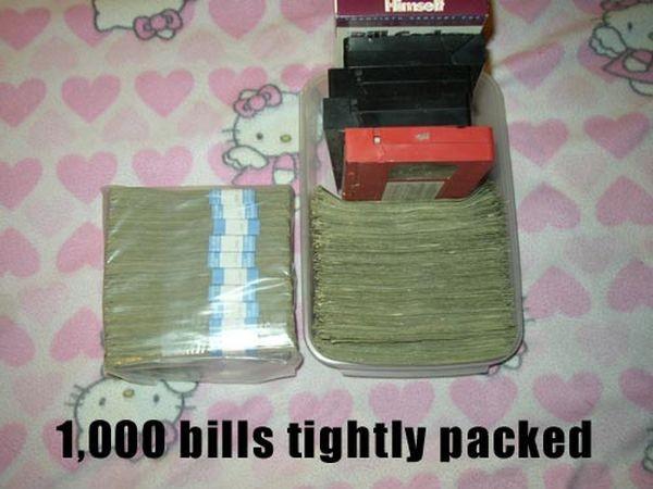 Куда можно спрятать один миллион долларов наличными (13 фото)