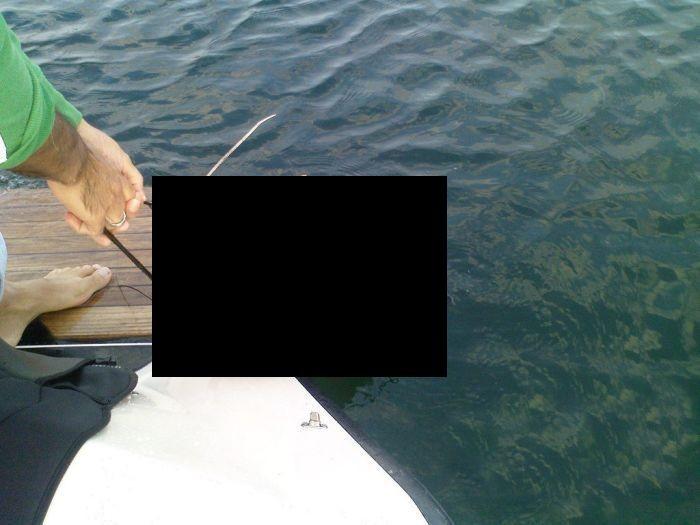 Сом заглотил буек (4 фото)