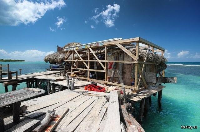 Работа мечты на Ямайке (8 фото)