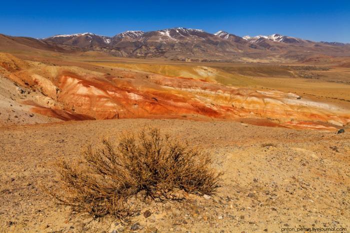 Марсианские пейзажи на Алтае (13 фото)