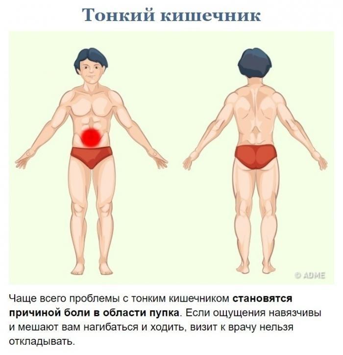 Как узнать что болит? (9 фото)