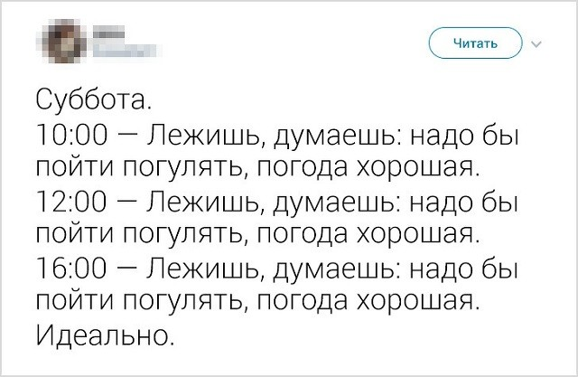 Народно-интернетные изречения о лени (16 скриншотов)