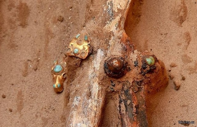 Астраханский фермер нашел древнее захоронение и украшение (14 фото)